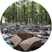 forestgarbage