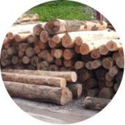 woodsake